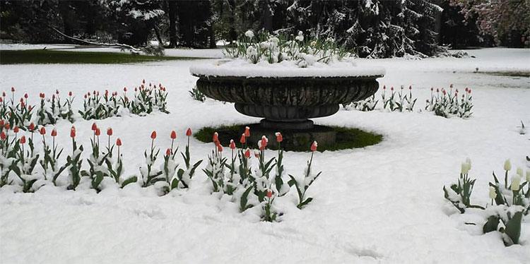 Schnee im April
