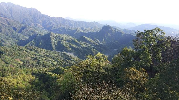 Qingcheng mountains Nationalpark