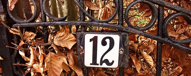 die Zahl zwölf